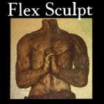 Flex Sculpt